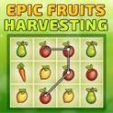 Epic fruit harvesting - matching game